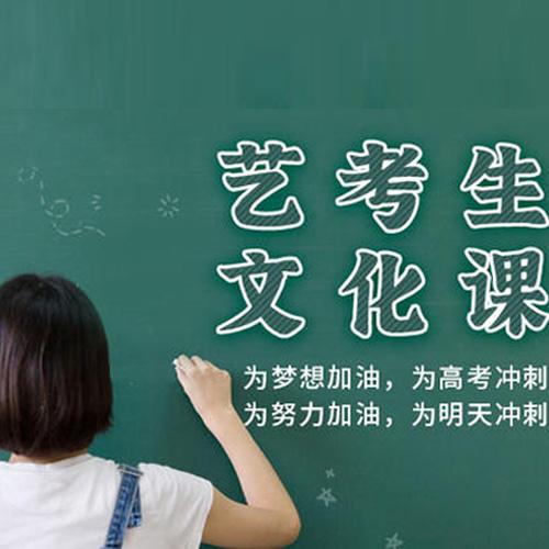 藝考文化課-龍翔高復學校