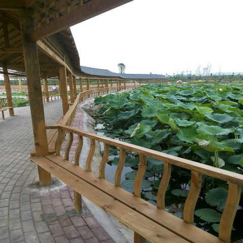 防腐木护栏,公园护栏生产厂家,口碑推荐麦色之晨