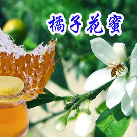 48橘子花蜜