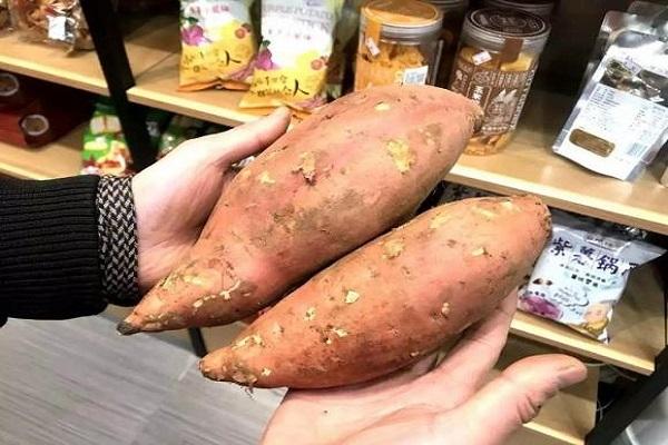 一只小红薯