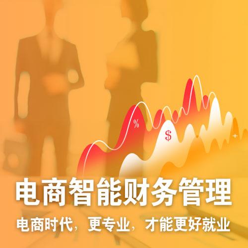 北京新华电商财务-技能+大专学历+签就业协议