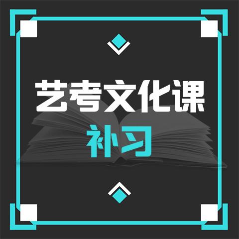 济南艺考文化课补习-艺考生文化课补习-艺术文化课