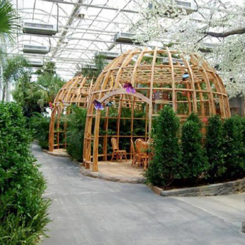汉中新型养殖温室大棚收费欢迎随时拨打业务专线咨询