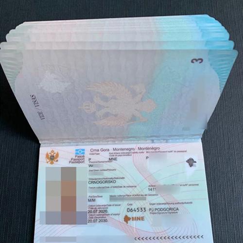 黑山护照-滨屿移民